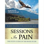 SESSION IN PAIN STUDY GUIDE COVER